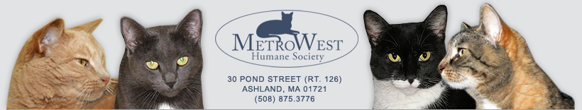 MetroWest Humane Society